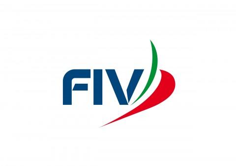 fiv_logo_1