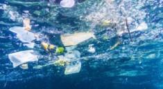 arcipelago-pulito